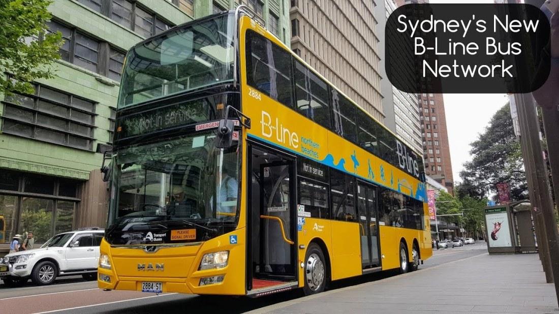 sydney bline bus2